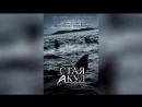 Стая акул (2008)   Shark Swarm