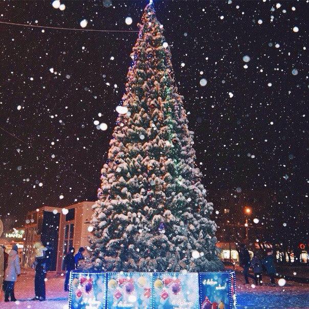 #vlg #volgograd #волгоград #красноармейский #зима #елка