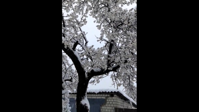 зима в апреле 2017