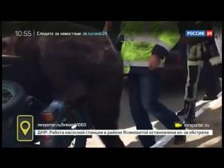 Байкеры прокатили медведя на мотоцикле по Сыктывкару.