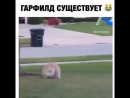 """Так просто быть заботливым❤️ 📍г.Ставрополь 🔴ул.Доваторцев 61А (рядом с гипермаркетом О""""кей) 🔴ул.Доваторцев 75А МЦ""""Космос"""" (рядом"""
