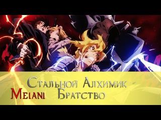 [Обзор аниме] Fullmetal Alchemist: Brotherhood (Стальной алхимик: Братство) - Melani Tsiberman