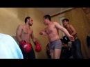 Домашний узбекские боксеры