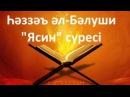 Һәззәъ әл-Бәлуши Ясин сүресі / әдемі дауыс