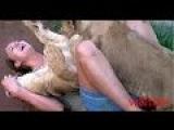 Sư tử máu dê trỗi dậy chịch em gái chịch bao đã - most amazing animals attack beautiful girl