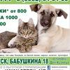 Центр льготной стерилизации в Иркутске [ЦЛС]
