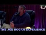 Джо Роган и Джои Диаз о музыкальных вкусах