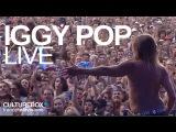 Iggy Pop (full concert) - Live @ Festival Rock En Seine 2016