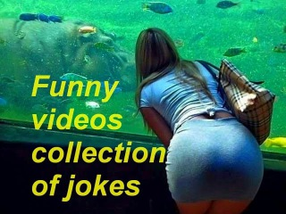 ПРИКОЛЫ \\ Funny videos collection of jokes