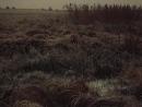 «Долгая дорога в дюнах» 6 серия 1980-5 год.