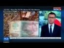 Черные копатели в поисках драгметаллов вскрывают шахты с огромным количеством банкнот СССР