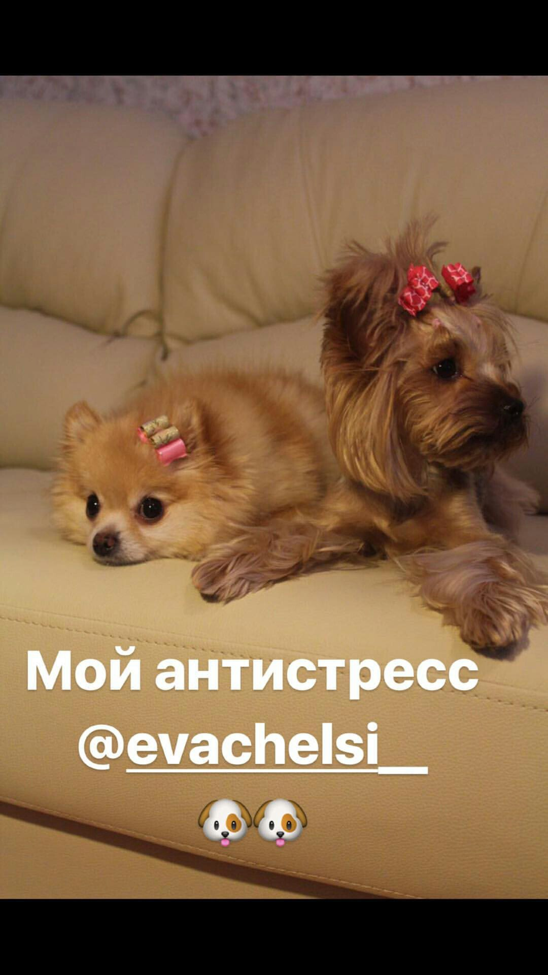 https://pp.userapi.com/c637422/v637422616/7a5b1/LBJluCx1CLI.jpg