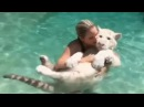 Тигрёнок в бассейне / Tiger in pool