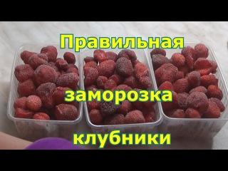 Как правильно заморозить клубнику на зиму