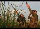 Какое упреждение надо брать при стрельбе влет по утке