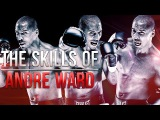 The Boxing Skills Of Andre Ward