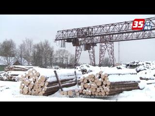 В Вологодской области банда нетрезвых грабителей на глазах у сторожа похитила с...
