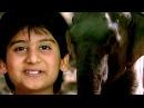 Anokha Aspatal - Hindi Dubbed Full Movies – Kids Jungle Film - Bollywood Latest Movies