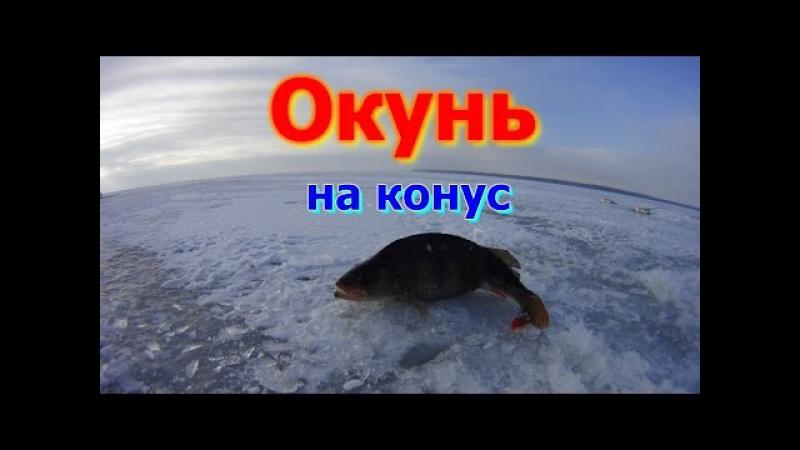 Зимняя рыбалка Окунь на конус