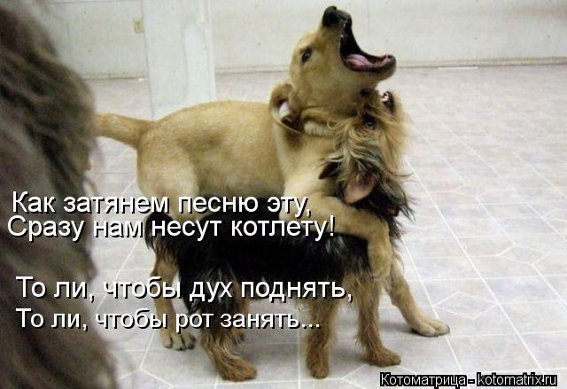 https://pp.userapi.com/c637423/v637423075/524dd/6VUS7WLWbKo.jpg