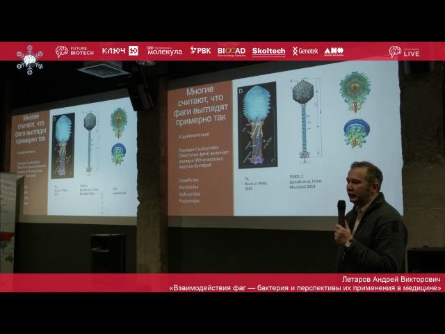 Андрей Летаров «Взаимодействия фаг — бактерия и перспективы их применения в медицине»