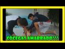 CÓCEGAS AMARRADO - (ft. Paulinho e Carlos Augusto)