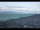 Слияние Тихого океана и Аляскинского залива