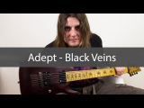 Adept - Black Veins (Guitar cover. Multitrack and tab)
