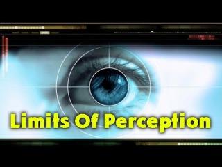 За Гранью Восприятия / Limits Of Perception (2001)