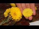 Хризантема из холодного фарфора легко, мастер класс / Chrysanthemum of cold porcelain easily