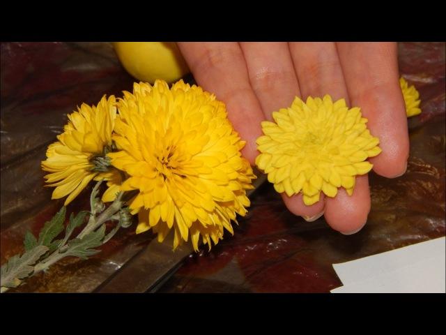 Хризантема из холодного фарфора легко, мастер класс Chrysanthemum of cold porcelain easily