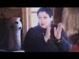 Баба Яга и все остальные иные - Академик Светлана Жарникова .