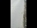 дорога на заброшку