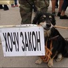 Пикет за гуманное отношение к животным в Томске