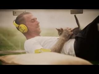 Котатерапия счастьем zoohome.by преданность семья всегдавместе даритьтепло забота друг радость кошки котики к