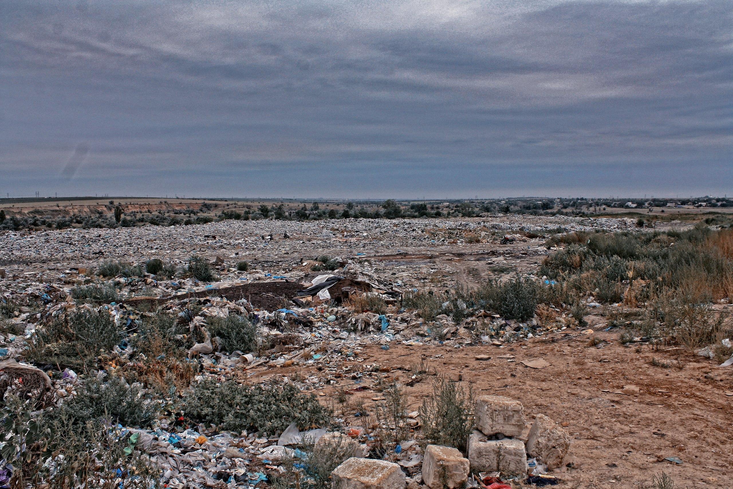 Нам нужно больше мусора - Владимир Миколаенко (фото)