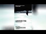 Искусство выживания (2012)   Survivor Type