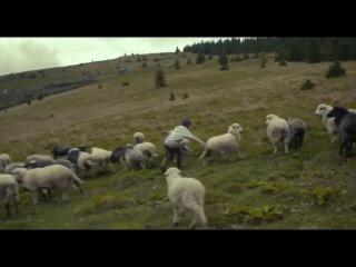 Жива Ватра / The Living Fire / Zhyva Vatra (2016) (український трейлер)