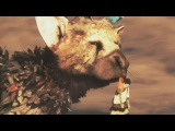 THE LAST GUARDIAN ENDING Post Credits Ending