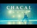 CHACAL - NO TE ENAMORES DE MI OFFICIAL VIDEO