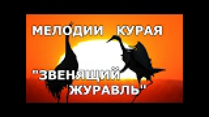 Звенящий журавль.(Сынрай торна) Башкирская народная инструментальная мелодия.