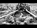 Тайны Войны 1941 года! Военная археология - Рассекреченная история. Несущие смерть