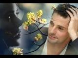 Кто Ты Такая, #Песни Любимым Женщинам, Эльдар Далгатов