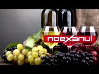 10 мифов о вине ⁄ ТОП-10 ⁄ Wine ⁄ Vin
