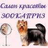 Стрижка кошек и собак ✂ ЗооКаприз и ЗооПрестиж