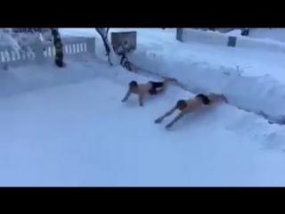 Снежный заплыв по-исландски