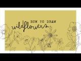 how to draw wildflowers