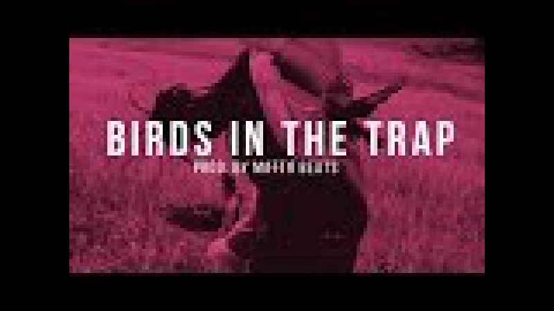 [FREE] Travis Scott type Beat BirdsInTheTrap | Matth Beats