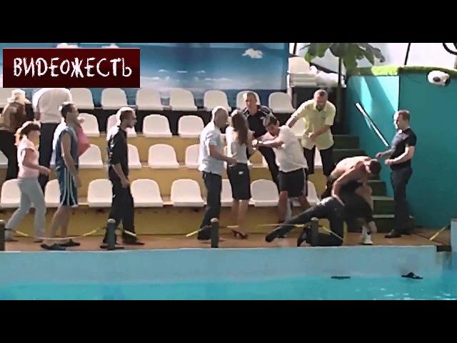 🔴 Драка в Ростовском дельфинарии ВИДЕОЖЕСТЬ
