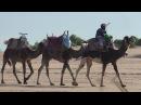 МАРОККО. Караван с верблюдами. путешествие. отдых. туризм. агадир. отпуск. тур приключения. океан. пляж. турция. египет. тунис. африка. приколы.